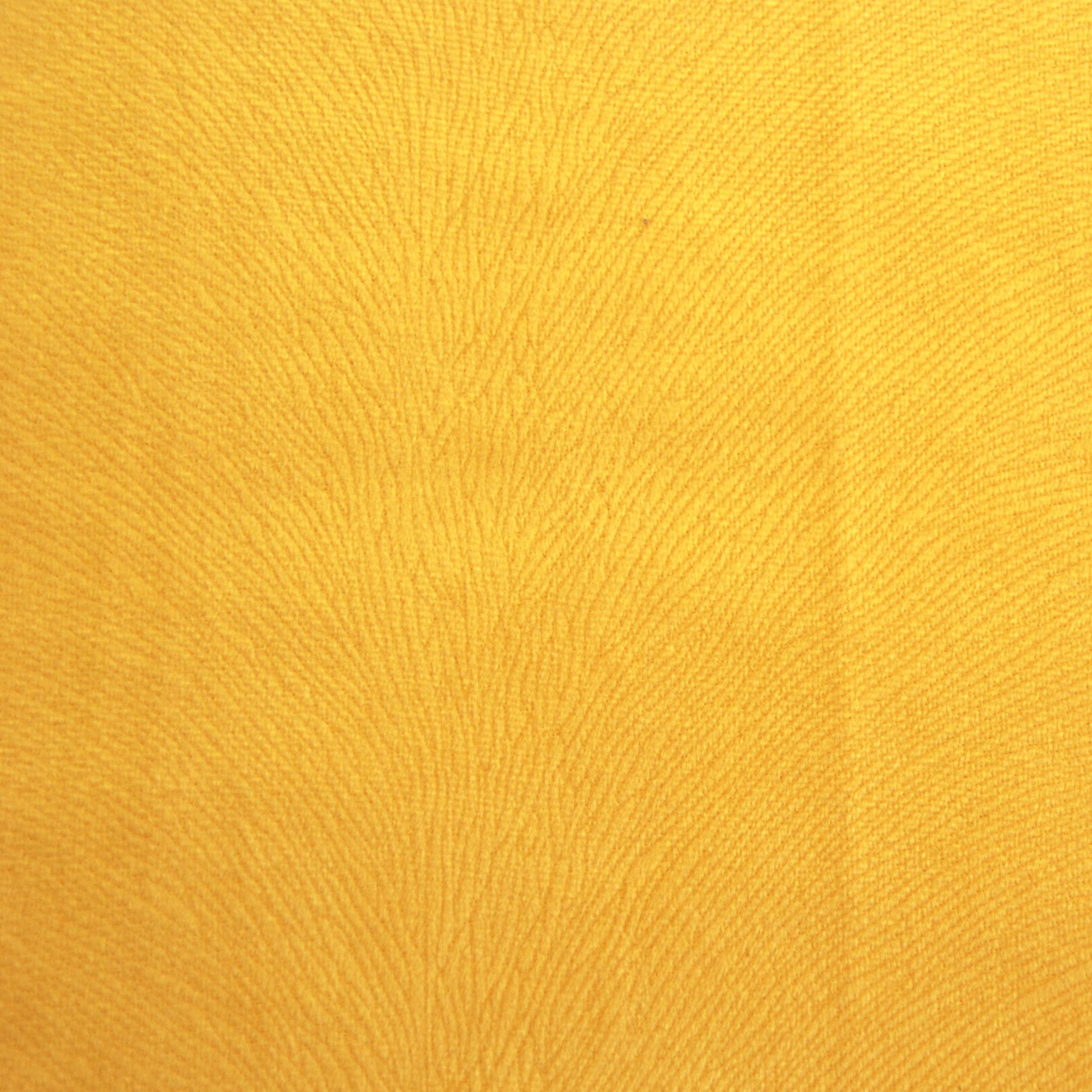 Animale Amarelo